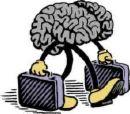 brain-bags